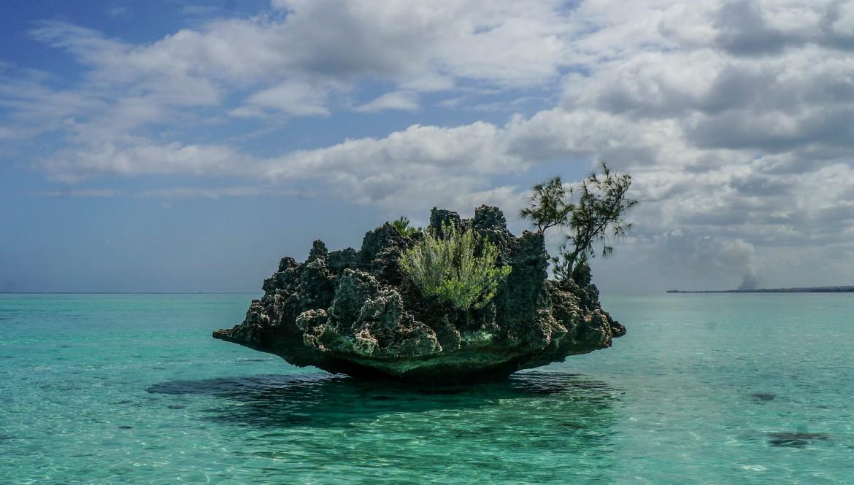 Mauritius Experience